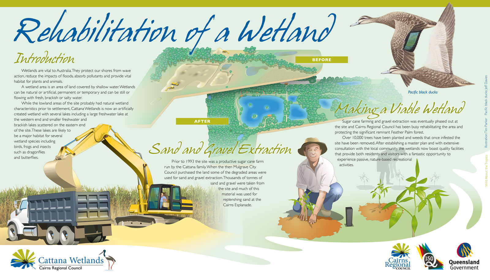 Cattana Wetlands interpretive sign for Cairns Regional Council